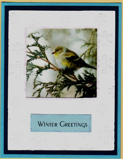 Snow Birds Acetate Card Set - Click Image to Close